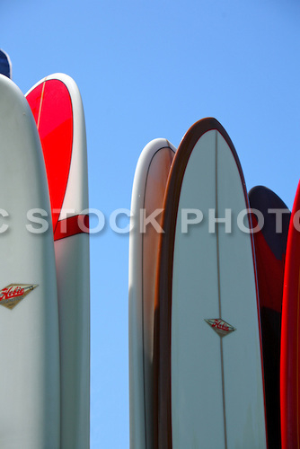 Hobie Surf Longboards
