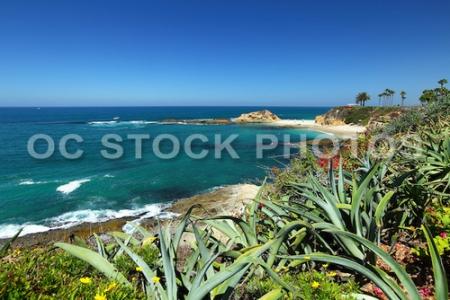 Pacific Ocean In Laguna Beach California